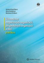 Účtovníctvo rozpočtových organizácií, príspevkových organizácií a obcí - praktikum