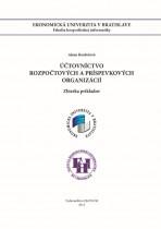 Účtovníctvo rozpočtových a príspevkových organizácií - zbierka príkladov